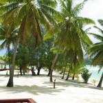 The Honeymoon Island of Aitutaki